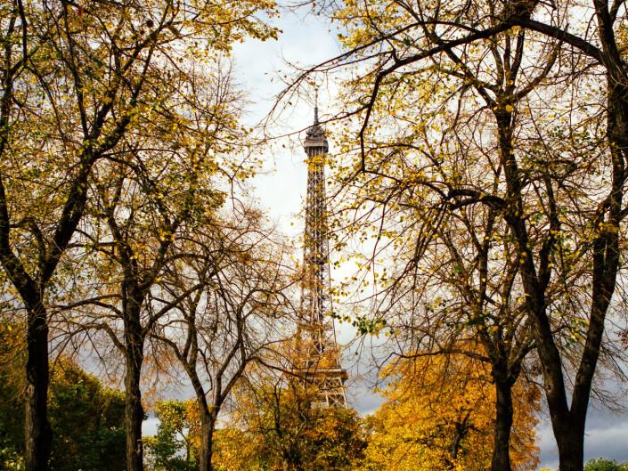 Travel Fall
