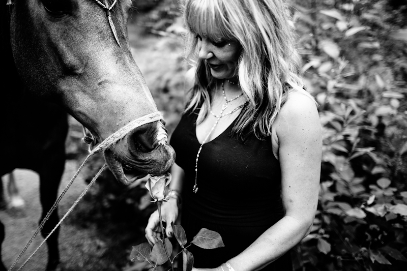 seattle animal portrait photographer